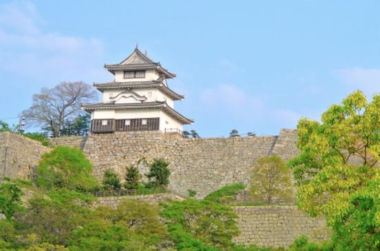 Ishigaki Nippon