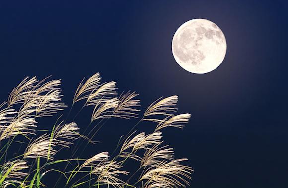Full moon fascination