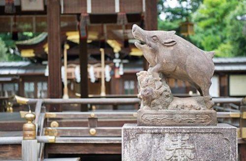 Zodiac boar