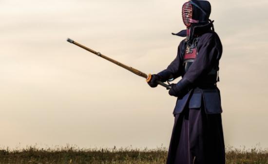 Kendo armor