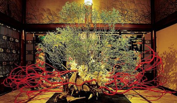 Flower arrangement artist