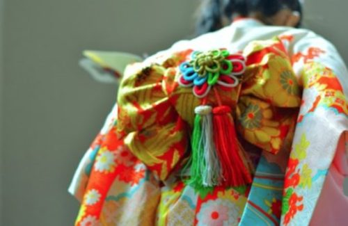 Kimono Usage