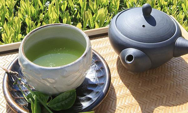 日本茶の温度