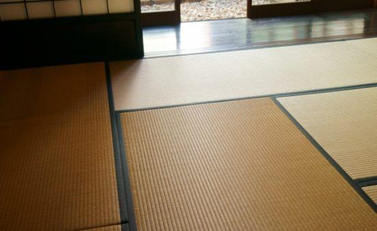 畳のアレルギーはなぜ起こるの?