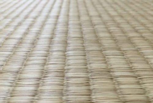 畳表の種類