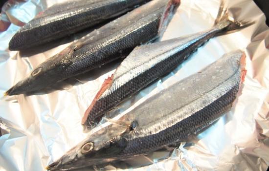 秋刀魚 アルミホイル