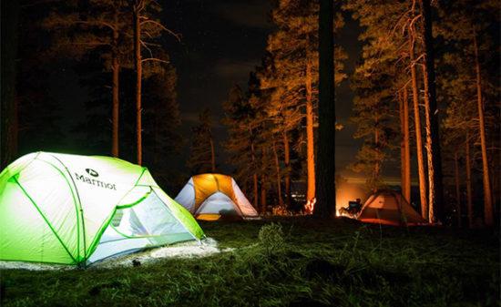 森の中でキャンプを楽しもう