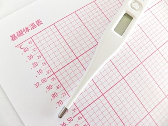 排卵と基礎体温