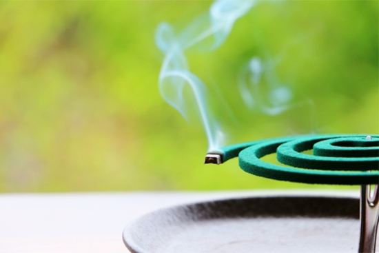 蚊取り線香の煙