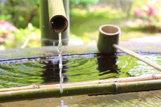 水は万物に欠かせない大切なもの