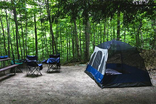 キャンプ場のサイトって何?