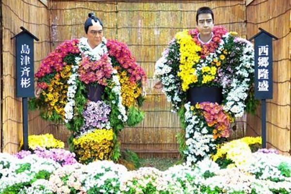 二本松の菊人形と日本の菊の歴史