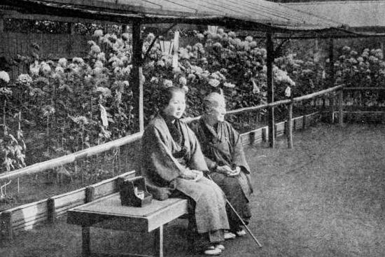 古典菊と観賞する人